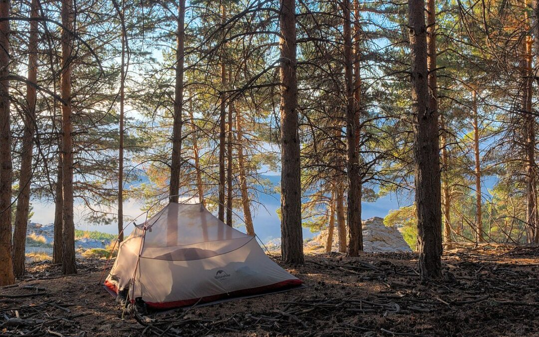 Where and Why Should Go Camping this Summer